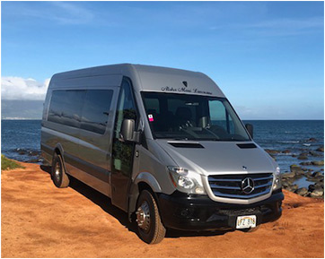 Hire a private luxury Mercedes Sprinter van and driver on Maui